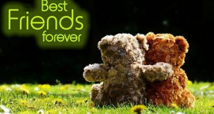 best friends forever status for whatsapp