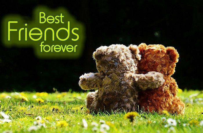 Photo of best friends forever status for whatsapp in hindi
