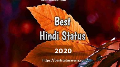 Photo of Best Status in hindi 2020 | Best shayari in hindi| शानदार स्टेटस हिन्दी में